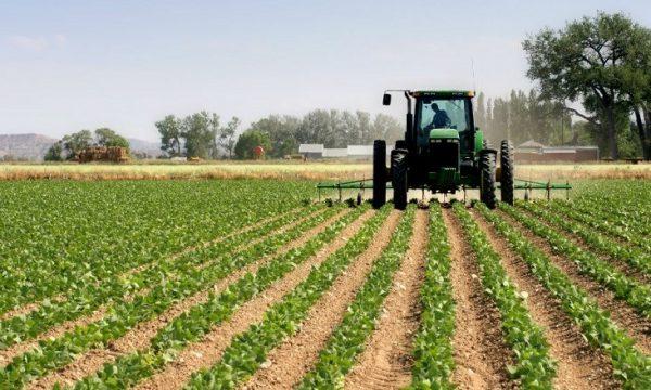 Tokat bujqësore nuk do të taksohen as vitin e ardhshëm