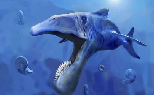 Zbulohet fosili i peshkut gjigant parahistorik me dhëmbë rrethorë  – foto