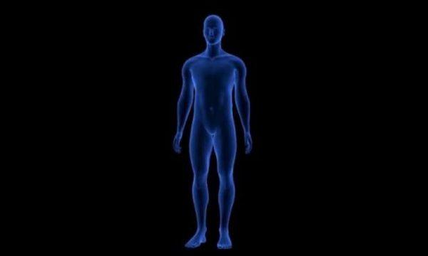 Shkencëtaret kanë zbuluar se diçka e frikshme po ndodh brenda trupit të njeriut